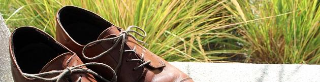 Shoe Update Footer